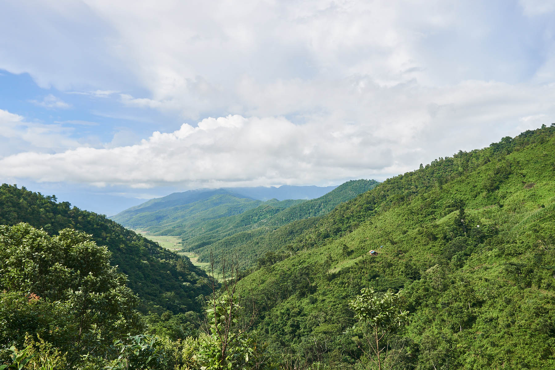 These hills are just about 1,5 kilometer away from Kangpokpi