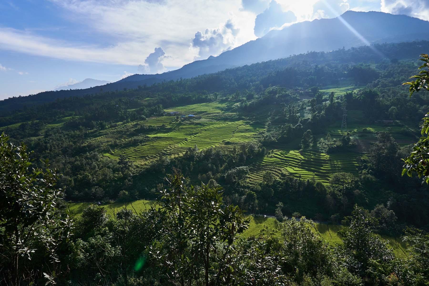 Pola tarasowe, lasy oraz zbocze góry